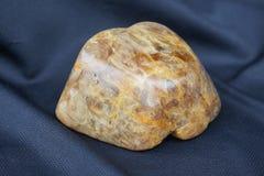 Камедь Kauri III Стоковая Фотография