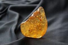 Камедь Kauri VII Стоковые Изображения