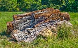 Камин в лесе Стоковое Изображение RF