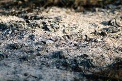 камин Стоковая Фотография RF