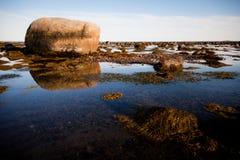 Камни в воде Стоковые Изображения