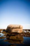 Камни в воде Стоковые Изображения RF
