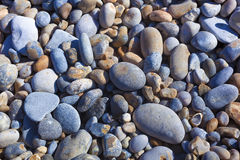 Камни в пляже, крышке Gris Nez Стоковое Изображение RF