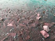 Камни в реке Стоковые Изображения