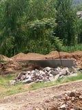 Камни и большие зеленые деревья Стоковое Изображение RF