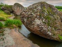 Камни и заводы Стоковые Фотографии RF