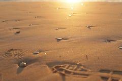 Камни и шаги камешка на песке, восходе солнца стоковое изображение