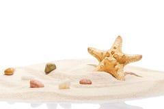 Камни морских звёзд и моря на куче песка пляжа Стоковые Фотографии RF