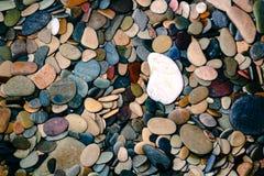 Камни моря Стоковое Изображение