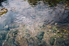 Камни на дне ясной горы текут стоковые фотографии rf