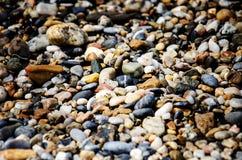Камни на камешках пляжа Справочная информация Стоковое Фото