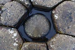 Камни на мощёной дорожке Giants Стоковое Изображение RF