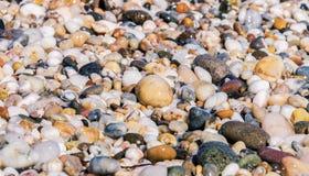Камни пляжа высекаенные морем стоковые фото