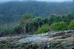 Камни пляжа Papuma и зеленые деревья Стоковые Изображения RF