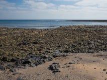 Камни побережья Фуэртевентуры, Канарские острова стоковые изображения rf