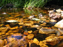 камни подводные Стоковое Фото