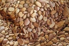 камни подушки конструкции цвета Стоковая Фотография RF