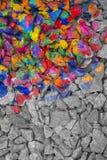 Камни покрашенные в чернилах другого цвета на половин, вторые полу- monochrome серые камни Стоковое Изображение RF