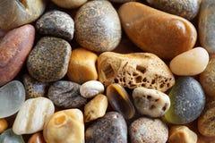 Камни пляжа макроса Стоковое Изображение