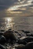камни пляжа присутствующие Стоковая Фотография RF