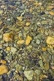 Камни реки в мелководье Стоковая Фотография