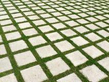 камни решетки травы вымощая Стоковая Фотография