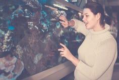 Камни рыб и коралла внутри большого аквариума Стоковая Фотография RF