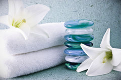 камни спы лилий Стоковое Фото