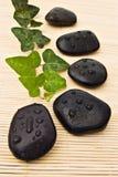 камни спы плюща Стоковая Фотография