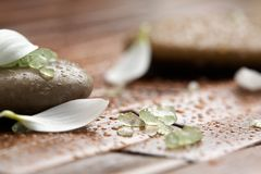 камни спы соли для принятия ванны Стоковые Фото