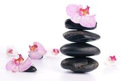 камни спы цветка розовые Стоковое Фото