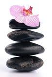 камни спы цветка розовые Стоковое Изображение