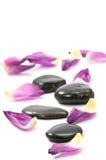 камни спы Стоковое Изображение RF