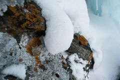 Камни с грибами стоковое фото