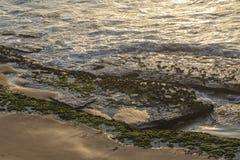 Камни с морской водорослью на береге дикого пляжа namibe с заходом солнца вышесказанного anisette стоковые изображения