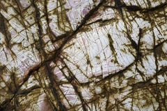 Камни текстуры Стоковое Изображение