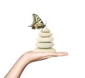камни удерживания руки бабочки Стоковая Фотография RF