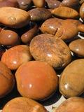 камни 1 влажные Стоковые Фото