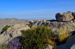 Камни, Kadamzhai, Кыргызстан Стоковое фото RF