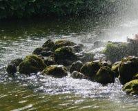 Камни Petergof стоковое изображение rf