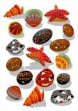 камни starfish seashell Стоковые Фото