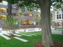 Кампус Гарвардского университета Стоковые Изображения RF