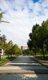 кампус Стоковые Изображения