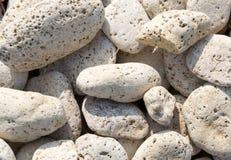 камушки белые Стоковые Изображения RF