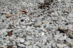 Камушки и утесы Стоковое Фото