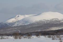 Камчатка, горы, тундра, зона Sobolewski Стоковое Фото