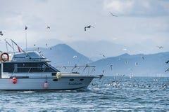 Камчатка Krai, Россия, ветрило 2017-Yachts Agu 19 на Okhotsksea стоковая фотография