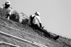 камышовая крыша Стоковая Фотография RF