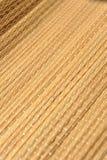 камышовая текстура Стоковая Фотография RF