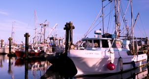 Канада, Ванкувер, Ричмонд, деревня Stevenston, причал рыболова, осмотр достопримечательностей пятна видеоматериал